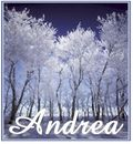 IceTrees%20Andrea